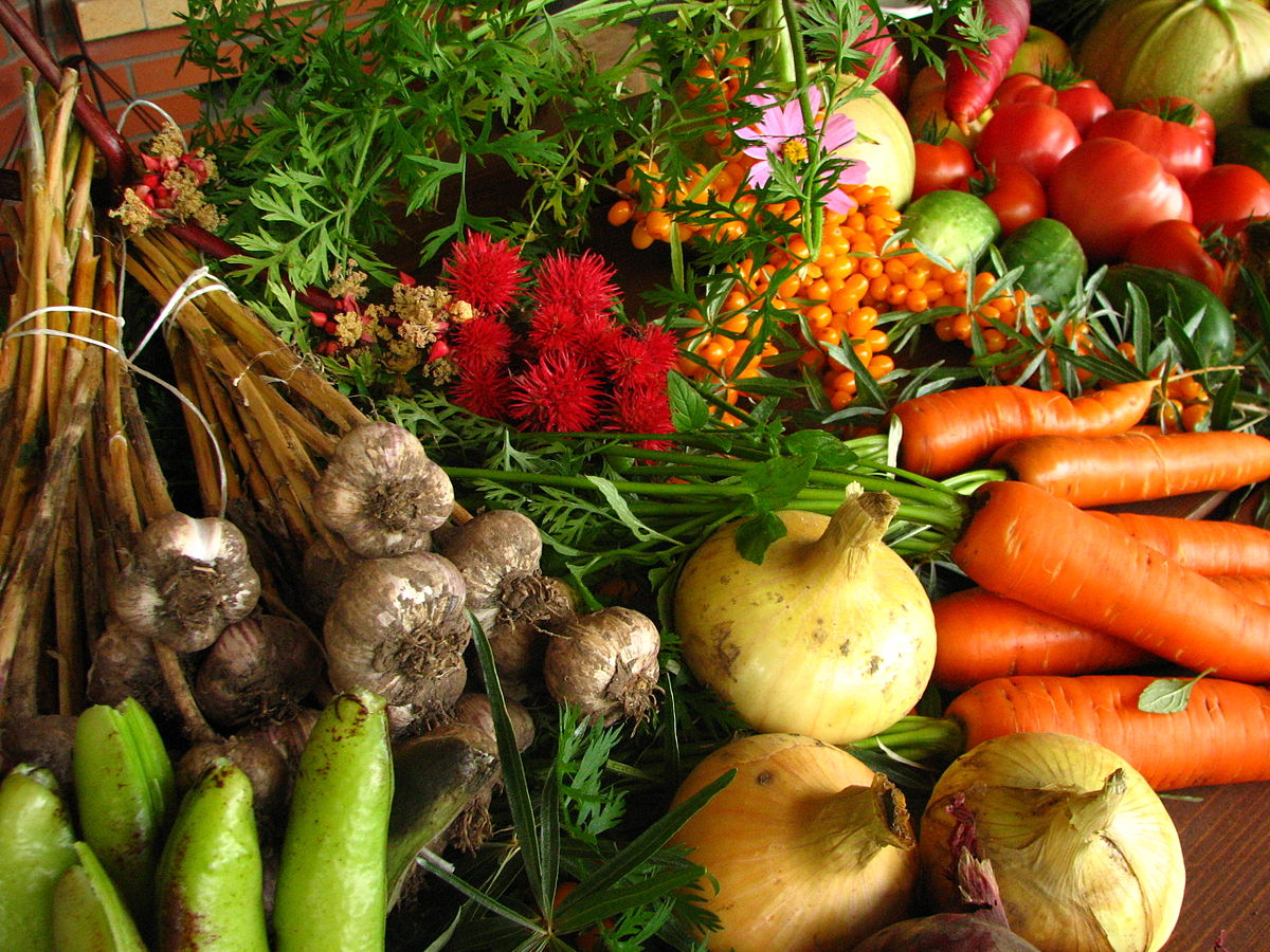 1200px-Ecologically_grown_vegetables